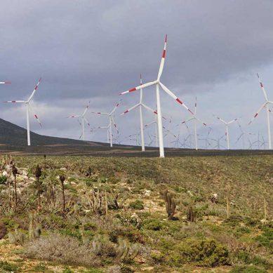 Poderoso grupo Luksic vende parque eólico como parte  de su proceso de desinversión en energía