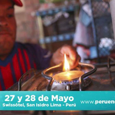 """""""Podemos traer gas de Bolivia para zonas donde difícilmente llegará el gas de Camisea"""""""
