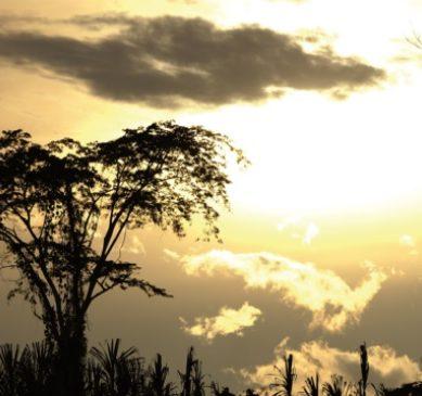 Minam: Perú apuesta por un futuro sin emisiones de carbono