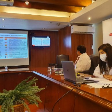 Ejecutivo instala grupo multisectorial que estudia reanudación progresiva de actividades